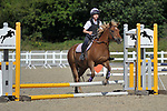 Class 2. 40cm Unaffiliated showjumping. Brook Farm Training Centre. Essex. 06/08/2017. MANDATORY Credit Garry Bowden/Sportinpictures - NO UNAUTHORISED USE - 07837 394578