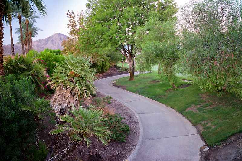 Pathway in garden. Palm desert, California