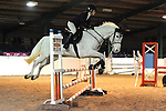 08/01/2017 - Class 8 - Unaffiliated New Year showjumping - Brook Farm TC