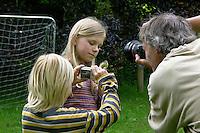 Blaumeise, pflegebedürftiges, verwaistes Küken in Hand, wird fotografiert, Blau-Meise, Cyanistes caeruleus, Parus caeruleus, Blue Tit, Mésange bleue