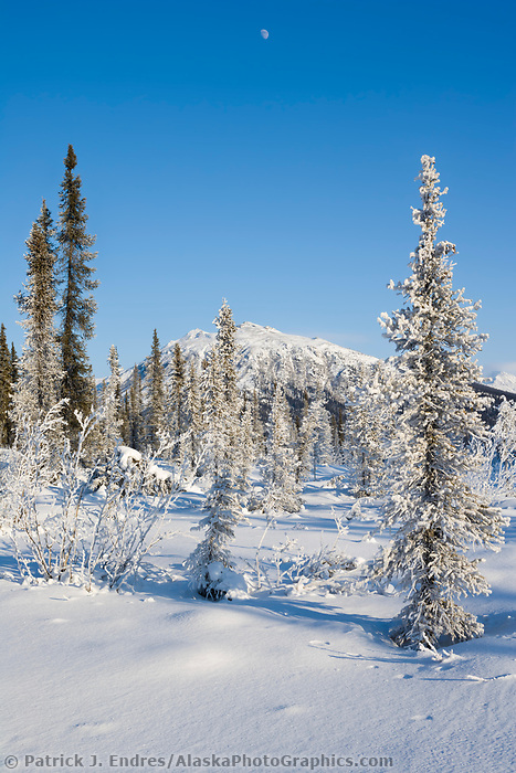 Winter landscape of the Brooks range near Wiseman, Alaska.