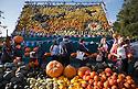 2014_10_27_slindon_spitfire_pumpkins