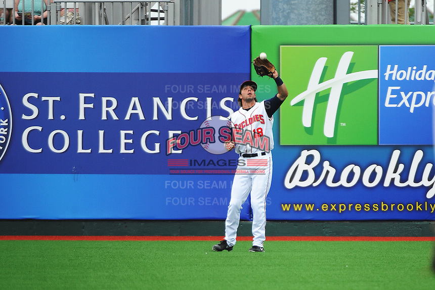 Brooklyn Cyclones outfielder James Roche (18) during game against the Hudson Valley Renegades at MCU Park on July 28, 2013 in Brooklyn, NY.  Brooklyn defeated Hudson Valley 4-2.  Tomasso DeRosa/Four Seam Images