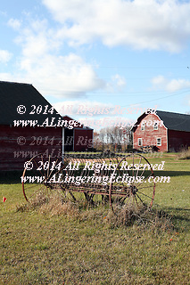 A 1918 Barn -- Thoughts on Hauling Hay on an Autumn Afternoon:  ...In an urban world where security cameras track movement without fail, these camera data are often used to uncover evidence in crimes, establish whereabouts and otherwise intrude upon human personal space with invasive insensitivity to the concept of privacy -- I found this barn of 1918 a quiet, timeless (aging gently) beauty of wisdom.  Carrying without a word its history in its simple, unadorned display of objects all resting upon each other in dramatic sunlight as if belonging together to each other (which they do in sharing a common past)... However,  the timeline suffers in examination:  Simple plastic discarded after the cows were long gone from their daily work of providing milk to the community, resting inside a rusted watering iron dish made, perhaps, 90 years ago having quenched the thirst of a mother cow too many times to count or imagine... but rusting which the plastic will never do in its long, enduring lifetime.<br /> Gathering dust, preserving memories, aging gently in this beautiful memory, never yet captured until today.   Margaret M. Savino, Ph.D.   written 10/10/09