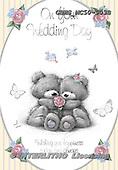 John, WEDDING, HOCHZEIT, BODA, paintings+++++,GBHSMC50-903B,#w# ,everyday