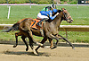 Forgotten Knot winning at Delaware Park on 6/29/11