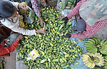 A woman sells cucumbers in a market in the Cambodian village of Maung Rossey.