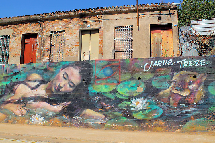 Street Art-Graffittis.<br /> Sabadell Centre.