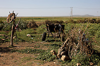 The back yard of a hut in Lafaissa, Somali Region, Ethiopia on Monday November 9 2009. .The Lafaissa facility is supported by the British non governmental organization Save the Children UK.