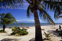 The popular tourist destination and beach playground of Key West in Florida, USA
