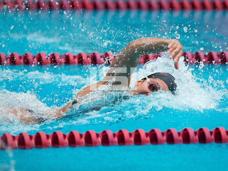 Stanford, CA - January 23, 2016.  Stanford Men's, Women's Swimming and Diving vs Arizona at Avery Aquatic Center on the Stanford Campus