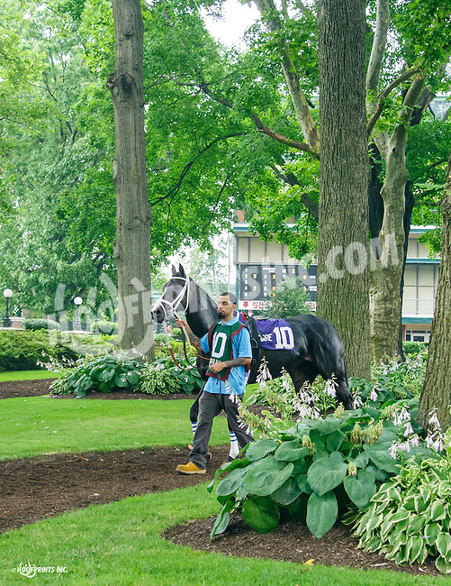 Four Inch Heels before The Dashing Beauty Stakes at Delaware Park on 7/9/16