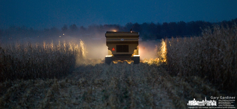 Farmers harvest corn in the early evening.<br />
