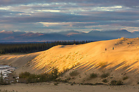 Ahnewetut Creek flows through the Great Kobuk Sand Dunes in the Kobuk Valley National Park, Baird Mountains, Arctic, Alaska.
