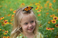 Monarch (Danaus plexippus), butterfly perched on little girls head, Hill Country, Central Texas, USA