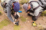 Andean Mountain Cat (Leopardus jacobita) biologists, Cintia Tellaeche and Juan Reppucci, photographing plant not previously seen in habitat, Abra Granada, Andes, northwestern Argentina