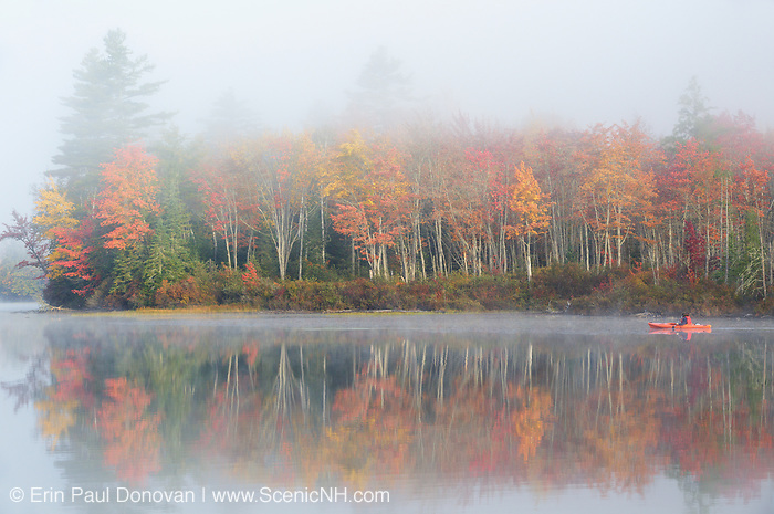 Fall foliage at Martin Meadow Pond in Lancaster, New Hampshire on a foggy autumn morning.