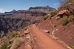 The South Kaibab Trail descending the Tonto Plateau, Grand Canyon National Park, Arizona .  John leads hiking and photo tours throughout Colorado. . John offers private photo tours in Grand Canyon National Park and throughout Arizona, Utah and Colorado. Year-round.