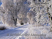 Marek, CHRISTMAS LANDSCAPES, WEIHNACHTEN WINTERLANDSCHAFTEN, NAVIDAD PAISAJES DE INVIERNO, photos+++++,PLMP0459Z,#xl#