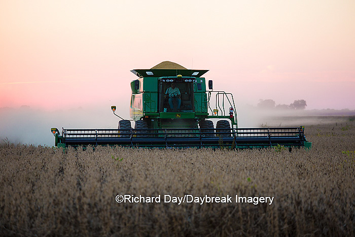 63801-06603 John Deere combine harvesting soybeans at sunset, Marion Co., IL