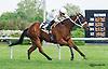 Village Princess winning at Delaware Park  on 5/25/15