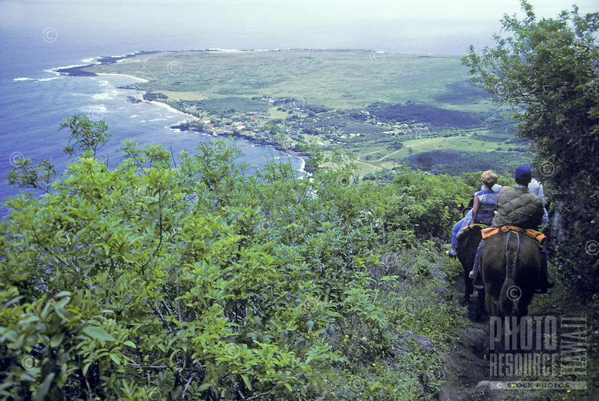Mule trail ride down steep cliffs to Kalaupapa Peninsula, Molokai