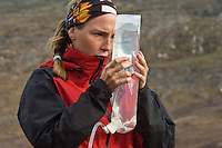Jente studerer vann i vannpose ---- Girl checking water in transparent water bag