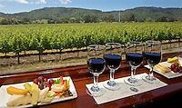 C- Napa Valley Wine Train Vistas, Napa Valley CA 5 15