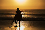 Horse rider at the beach at sunset.