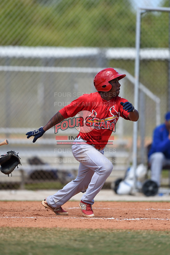 St. Louis Cardinals Darren Seferina (5) during a minor league spring training game against the New York Mets on April 1, 2015 at the Roger Dean Complex in Jupiter, Florida.  (Mike Janes/Four Seam Images)