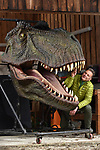 Pictured:  Chris with the T-Rex in his garage.<br /> <br /> Wildlife TV presenter Chris Packham is struggling to find a new home - because he needs one big enough to fit his life size T-Rex head.   The Springwatch presenter said he had forgotten just how big the dinosaur was when he accepted the unusual 100kg item as a present.<br /> <br /> As a result, the 2 and a half metre tall replica is too big to fit into his country cottage in Hampshire's New Forest.  The naturalist - who earlier this year presented a BBC show about the dinosaur - is now looking for a new house with a wall big enough to mount the head on.   SEE OUR COPY FOR DETAILS.<br /> <br /> © Simon Czapp/Solent News & Photo Agency<br /> UK +44 (0) 2380 458800