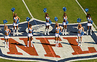 The Carolina Panthers cheer during a NFL football game at Bank of America Stadium in Charlotte, NC.