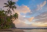 Kauai, HI<br /> Sunrise clouds and overhanging palm trees on Hanalei Bay near Makahoa point