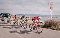 Markel Irizar (ESP/Trek-Segafredo): the peloton's locomotive, cruising by the sea<br /> <br /> 27th Challenge Ciclista Mallorca 2018<br /> Trofeo Campos-Porreres-Felanitx-Ses Salines: 176km