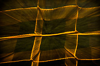 Glowing golden shapes, uneven rectangles, growing from a dark green expanding background.  Abstract playground art.