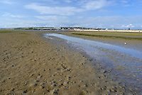 Low tide at Ferrybridge, Portland - Classic wader feeding ground