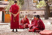 Buddhist monks at Sera monastary in Lhasa, Tibet