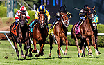 AUG 24: Annals of Tim with Javier Castellano up wins the Sword Dancer Stakes at Saratoga Racecourse in New York on August 24, 2019. Evers/Eclipse Sportswire/CSM