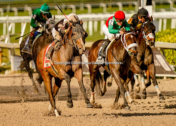 January 25, 2020: Pink Sands, #11, ridden by jockey Jose Ortiz, wins the Inside Information Stakes during the Pegasus World Cup Invitational at Gulfstream Park Race Track in Hallandale Beach, Florida. Scott Serio/Eclipse Sportswire/CSM