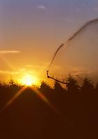 Sunrise, irrigation of corn. Near Irish Bend, Oregon.