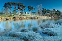 Hay Lodge Park, Peebles, Scottish Borders