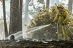 August 22, 2001 Coulterville, California  -- Creek Fire – Firefighter Gabriel Agee from Carmel Valley, Cachagua Fire District, douses one of the many hot spots on Cuneo Road.  The Creek Fire burned 11,500 acres between Highway 49 and Priest-Coulterville Road a few miles north of Coulterville, California.