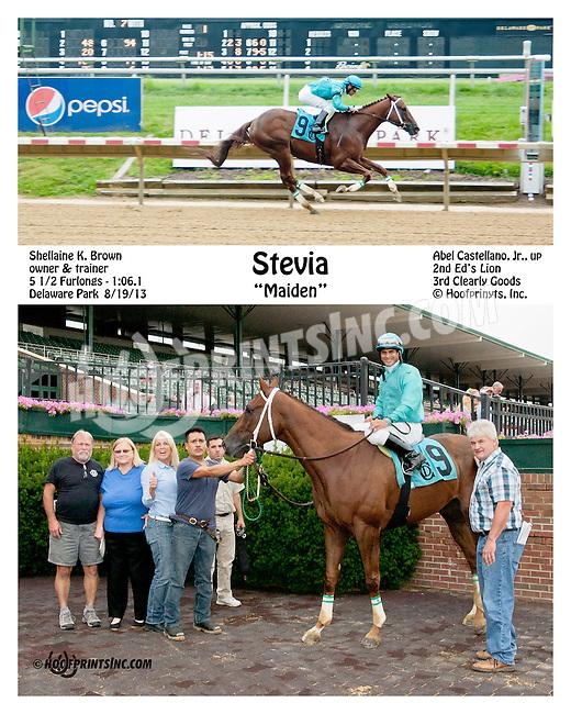 Stevia winning at Delaware Park on 8/19/13