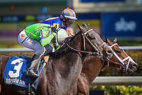 HALLANDALE, FL - JANUARY 28: Imperative #3, ridden by Antonio Gallardo win the Poseidon Stakes at Gulfstream Park on January 28, 2017 in Hallandale Beach, Florida. (Photo by Zoe Metz/Eclipse Sportswire/Getty Images)