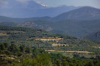 Pyranees countryside, Ainsa district, Arogon, Pyranees, Spain