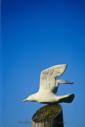 Carved wooden seagull on wooden dock post