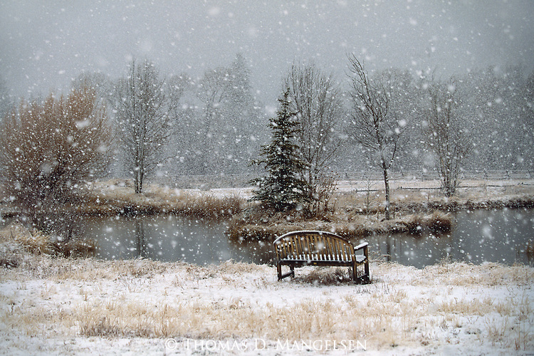 A bench sits near a pond during a snowstorm in Northwest Wyoming.