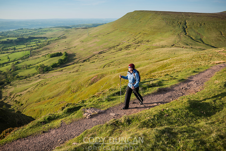 Female hiker on trail to Twmpa, Black Mountains, Brecon Beacons national park, Wales