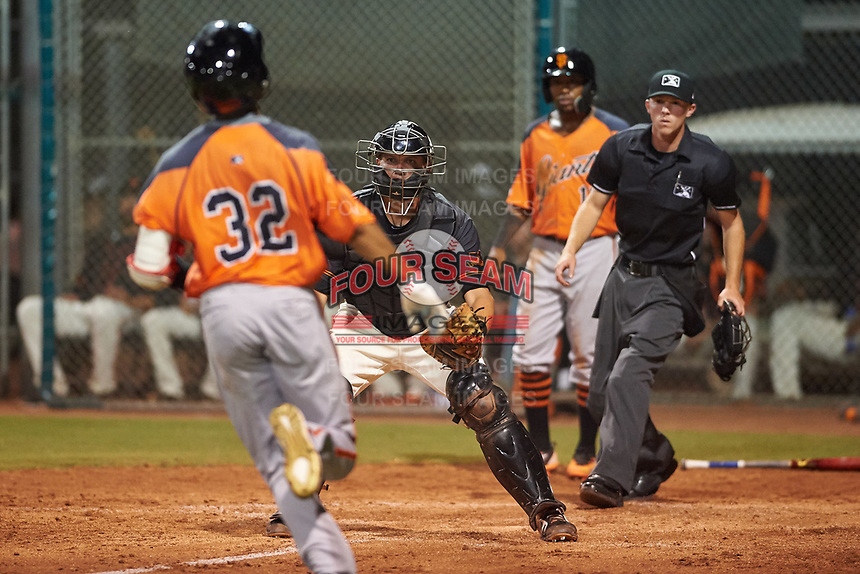 AZL Giants Black catcher Matt Malkin (5) prepares to apply the tag to Najee Gaskins (32) as Raiber Gutierrez (15) and home plate umpire Bailey Dutten look on during an Arizona League game against the AZL Giants Orange on July 19, 2019 at the Giants Baseball Complex in Scottsdale, Arizona. The AZL Giants Black defeated the AZL Giants Orange 8-5. (Zachary Lucy/Four Seam Images)