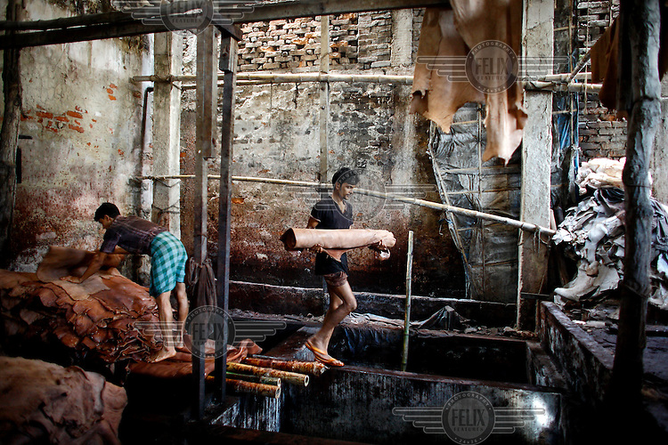 Workers handling hides at a tannery. Almost all of Bangladesh's 200 plus tanneries are concentrated in Hazaribagh, a densely populated, odious neighbourhood on the banks of the Buriganga River. Residents of Hazaribagh's slums complain of illnesses such as fevers, skin diseases, respiratory problems and diarrhoea. They blame the tanneries for polluting the air, water, and soil and therefore causing their afflictions. The lives of the tannery industry's estimated 20,000 workers are harsh with many dying before they turn 50. Everyday these factories discharge thousands of litres of foul-smelling liquid waste into the river. However, with almost one billion USD a year in export sales, the leather industry is one of Bangladesh's most profitable sectors and there has been limited progress in cleaning it up. For 60 years of operations an unrecorded amount of chromium sulphate, lead, organohalogens, lime, hydrogen sulphide, sulphuric acid, formic acid, bleach, dyes and oils have been discharged into the river.